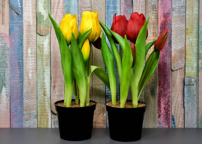 Sztuczne kwiaty w doniczce - jak żywe